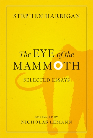 eye of the mammoth
