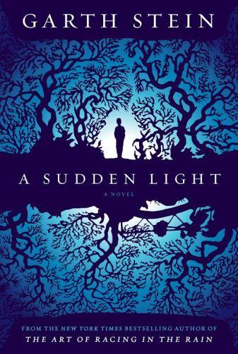 stein sudden light