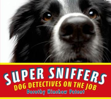 super sniffers jacket