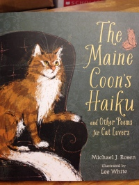 maine coons haiku