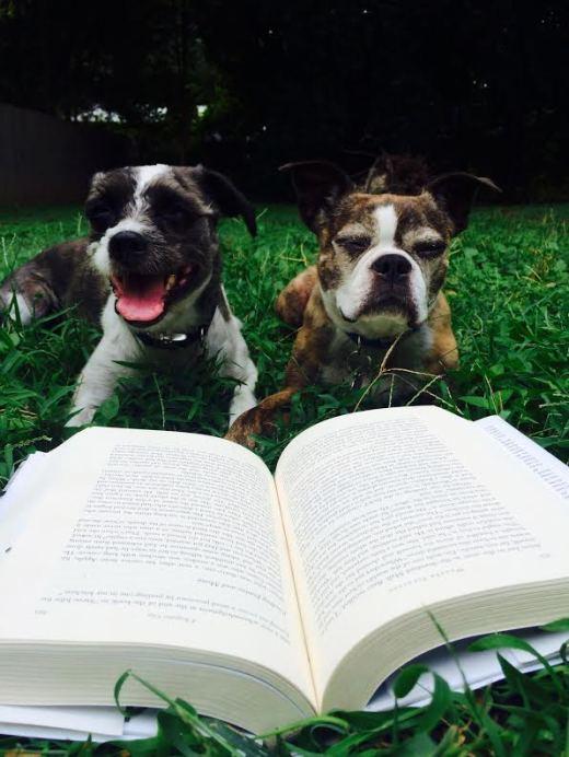 pups reading