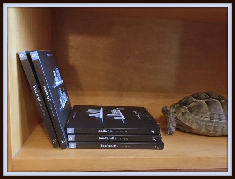Zeno Bookshelf Shellfie